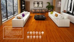 扬子・发明专利纯实木地热地板让你拥有属于