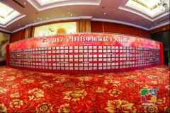 """冠军磁砖荣获""""2017-2018中国家居十大"""